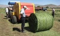 SÜT ÜRETİMİ - Çavdarhisar'da Çiftçilere Uygulamalı 'Süt Sığırı Yetiştiriciliği' Kursu