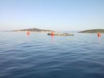 ÖZLEM YILMAZ - Ayvalık Balık Çiftliği Davasında Sevindirici Haber