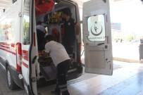 ALACAK VERECEK MESELESİ - Elazığ'da Bıçaklı Kavga Açıklaması 3 Yaralı