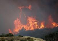KALIFORNIYA - Kaliforniya'da Olağanüstü Hal İlan Edildi