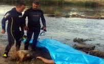 KREDI KARTı - Kızılırmak'a Atlayan Genç Boğuldu