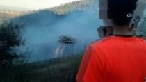 Osmaniye'de Orman Yangını Büyümeden Söndürüldü