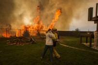 1 MİLYON DOLAR - Komşusuyla Kavga Etti, Eyaleti Yaktı