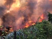 Orman Yangını İle İlgili Soruşturma Başlattı
