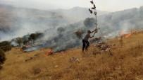 GÖKÇEBAĞ - Piknikçilerden Kalma Küller Az Daha Beldeyi Yakıyordu