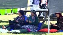 ŞEHİT YAKINI - Şehit Yakınları Piknikte Buluştu