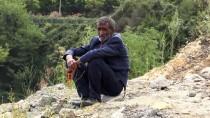 TÜRKİYE TAŞKÖMÜRÜ KURUMU - Denizde Kaybolan Genç Aranıyor