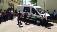 ALI TOK - Ticari araç devrildi: 2 ölü, 2 yaralı
