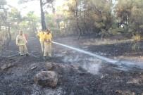 Çanakkale'de Orman Yangını Kontrol Altında