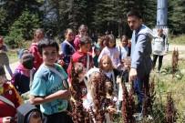 KUŞ YUVASI - Doğa Ve Bilim Şenliği Uludağ'ı Renklendirdi