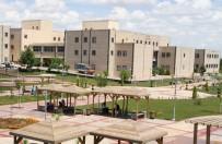 GENEL KÜLTÜR - Harran Üniversitesi Türkiye 8.'Si Oldu