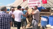 MUSTAFA YAVUZ - Hayvan Pazarlarında Kurban Bayramı Hareketliliği