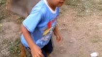 AV KÖPEĞİ - Kahramanmaraş'ta Küçük Çocukla Köpeğin Oyunu