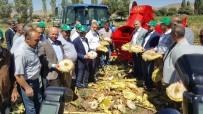 KAYSERİ ŞEKER FABRİKASI - Kayseri Şeker  İle Kızık Köyü Birlikte Ayçekirdeği Hasad Etkinliği Düzenledi