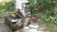 Kazdağları Milli Parkı Sahipsiz Kalınca Çöplüğe Döndü