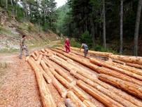 YEŞILÇAY - Köylüler 70 Hektar Orman Sahasında Üretim Gerçekleştirdi