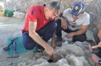 KÜLTÜR VE TURIZM BAKANLıĞı - NEVÜ Rektörü Bağlı, Fosil Lokalitesi Kazısını Ziyaret Etti