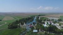 HAZİNE VE MALİYE BAKANLIĞI - Sakarya Nehri Yeniden Doğuyor