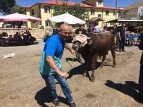 MEHMET ERSOY - Bayburt'ta Hayvan Pazarında 'Kurban' Hareketliliği