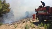 İTFAİYE ARACI - Manavgat'ta Orman Yangını