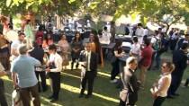 MANGO - Pakistan Mango Festivali Ankara'da Kutlandı