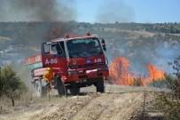 MEHMET CAN - Selendi'de Orman Yangını