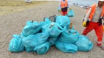 REHABİLİTASYON MERKEZİ - Van Gölü'nde Martı Ölümleri