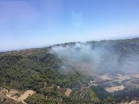 İTFAİYE ARACI - Alanya'daki Orman Yangını Kontrol Altına Alındı