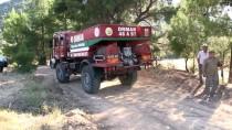 ZEYTINLIK - Muğla'da Orman Yangını