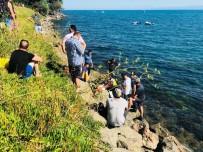 DEVLET HASTANESİ - Serinlemek İçin Denize Girdi, Hayatını Kaybetti