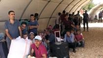 SINIR KAPISI - Suriyeliler Bayram İçin Ülkelerine Gidiyor