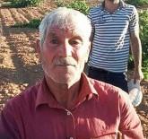 ADLİ TIP KURUMU - Devrilen Traktörün Altında Kalan Çiftçi Öldü