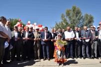 KÜLTÜR BAŞKENTİ - Taşköprü'de Dünyaca Ünlü Sarımsağın Festivali Başladı