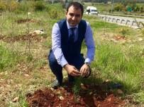 ORMAN YANGINI - Başkan Ateş, Yaz Aylarında Meydana Gelen Orman Yangınlarına Karşı Uyardı