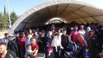 FIRAT KALKANI - Giden Suriyelilerin sayısı 31 bine ulaştı