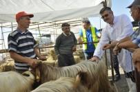 DEZENFEKSİYON - Eskişehir'de Hayvan Pazarı Ve Kurban Kesim Yerlerinde Kontrol Noktaları Oluşturuldu