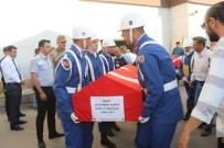 AYDıN ÖZER - Morgdan Alınan Şehitler Tören Alanına Götürüldü