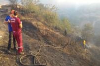 4 Gündür Süren Yangın Kontrol Altına Alındı