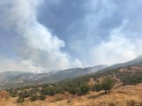 Bingöl'de 4 Gündür Süren Yangın Kontrol Altına Alındı