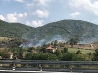 ANIZ YANGINI - Fındıklıkta Çıkan Yangın İtfaiye Ekiplerince Söndürüldü