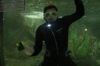 TİMSAH - Hayvanat Bahçesindeki Dev Akvaryumlarda Bayram Temizliği