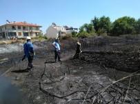 Kavak Ağacı Yangın Çıkardı