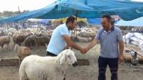 BÜYÜKBAŞ HAYVANLAR - Kırıkkale'de Kurban Pazarı Hareketlendi