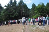 ÇORUH - Protesto İçin Gittiler Piknik Yaptılar
