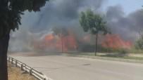 NİLÜFER - Sanayide Çıkan Yangında Faciadan Dönüldü