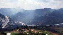 ORMAN YANGINI - Suriye Sınırında Orman Yangını