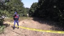 Yalova'da Cinayet
