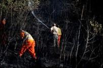 NİLÜFER - Yerleşim Alanına Yakın Yerde Çıkan Yangın Büyümeden Söndürüldü