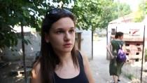 KALENDER - Edirne'nin Sokak Hayvanları Öksüz Kaldı