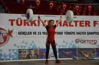 HALTER ŞAMPİYONASI - Ordu'da Halter Şampiyonası